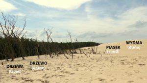 Photo: Adrana Kratiuk/Mowi się po polsku