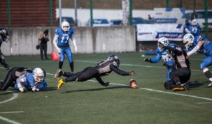 Seahawks Gdynia - Falcons Tychy, photo: Jakub Wozniak/Tricity News