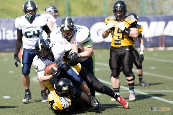 Seahawks Gdynia – Cowbells Budapest photo Luca Aliano Tricity News-6
