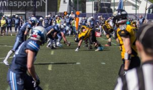 Seahawks Gdynia - Warsaw Sharks, photo: Jakub Wozniak/Tricity News