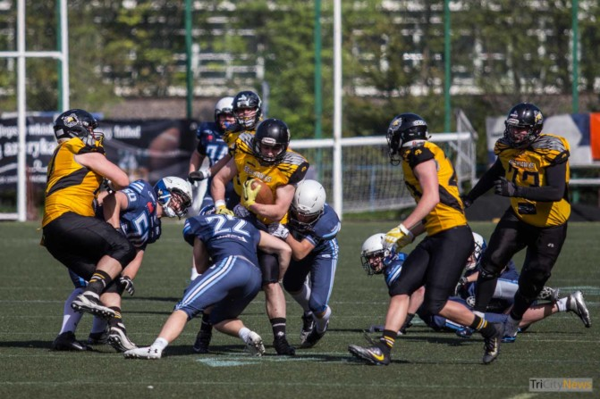 Seahawks Gdynia – Warsaw Sharks photo Jakub Wozniak Tricity News-23