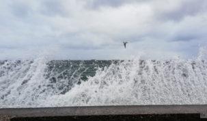 Storm in Gdynia, 02.01.2019, photo: Jakub Wozniak/Tricity News